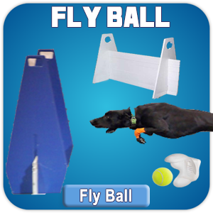 Max200 Fly Ball Catalog of Products