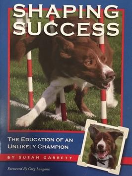 Shaping Success by Susan Garrett