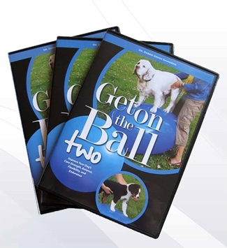 Get on the Ball Two by Debbie Gross Saunders
