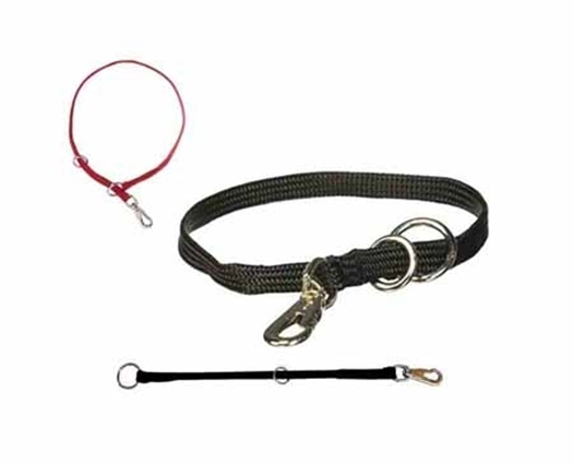 Picture for category Nylon Collars