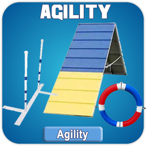 Max200 Agility Catalog of Products