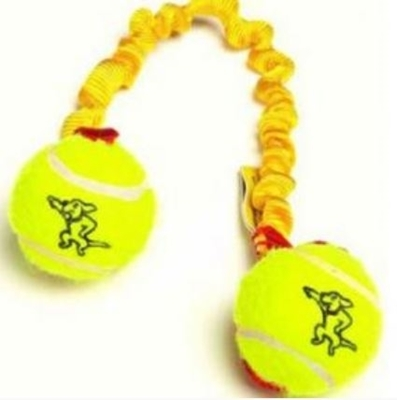 Bungee Ball Tug with Mini Tennis Balls