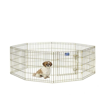 Gold Zinc Exercise Pen - 24
