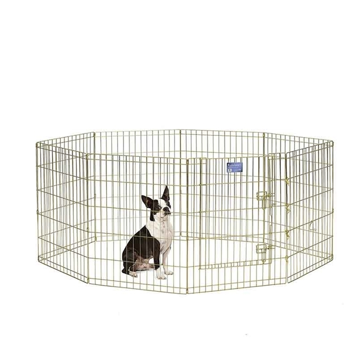 Gold Zinc Exercise Pen - 30