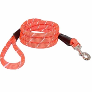 Reflective Rope Leads Orange