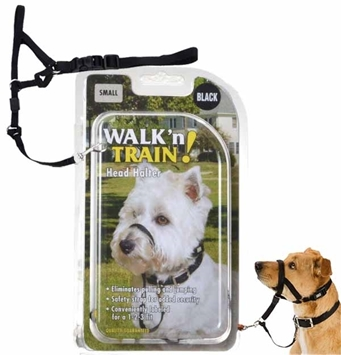 Walk N Train Head Halter