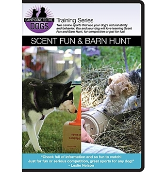 Picture of Scent Fun & Barn Hunt