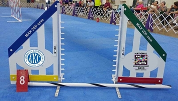 AKC 2020 Nationals Souvenir Model B Jump