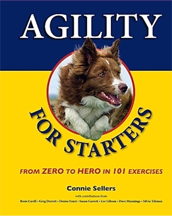 Picture of Agility For Starters