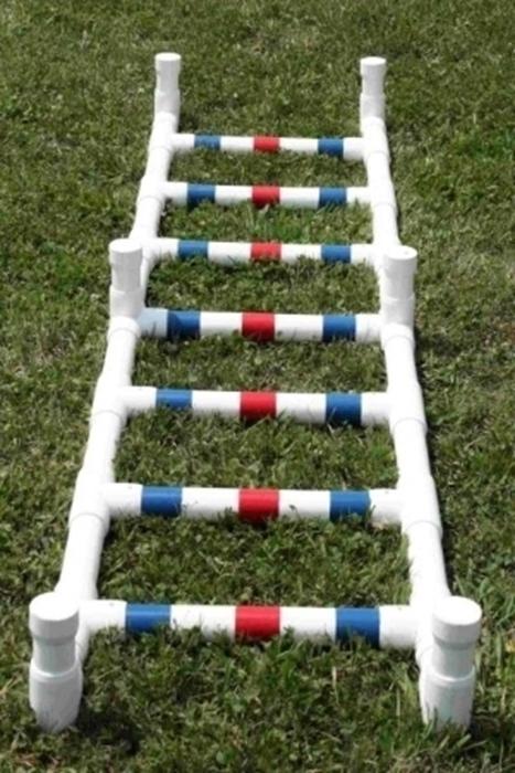 Agility Ladder Puppy Configuration